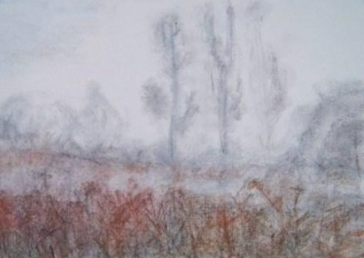 DECEMBER -1, pastel, paper, 58x42cm, 2009, sold